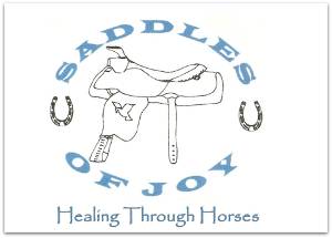 Saddles of Joy, Inc. Yuma AZ